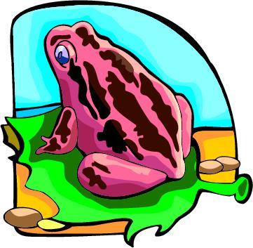 west froggies 22